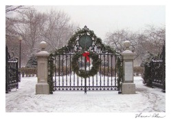 Public Garden gate by Sharon Shea