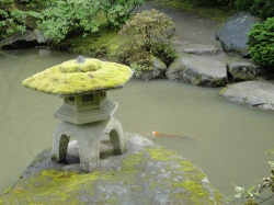 Moss crowned stone lantern